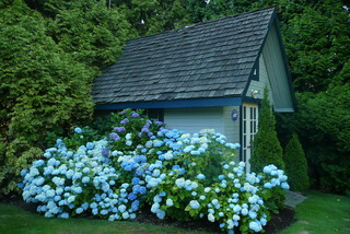 Complete Your Landscape With a Backyard Cottage