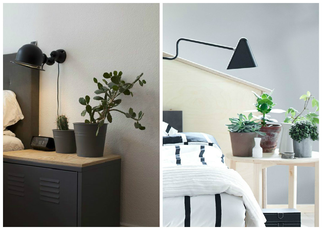 plantes d 39 int rieur d corez avec des plantes vertes. Black Bedroom Furniture Sets. Home Design Ideas